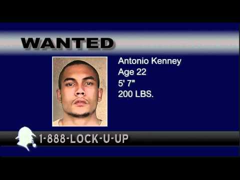 Crimeline 6 05 2012