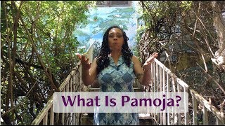 What Is Pamoja?