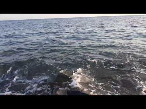 Чёрное Море / Звуки природы