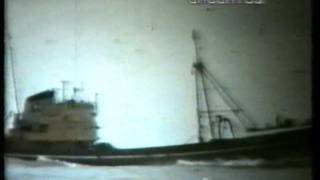 HULL TRAWLERS NO 1.wmv