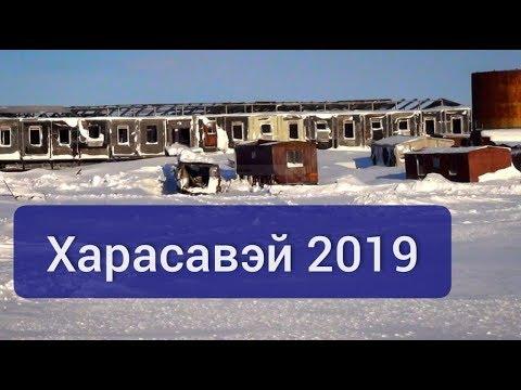 Харасавэй 2019