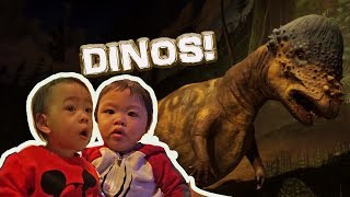 Dinosaurs, Bugs + More | Visitng a Science Museum | Pacific Science Center Part 1