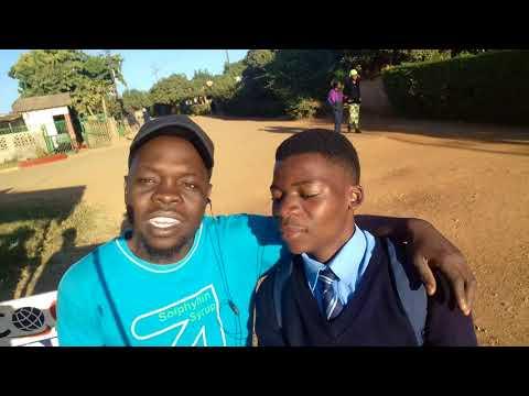 NEW ZIMBABWE - NEW  KADOMA -