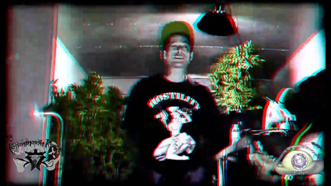 Kottonmouth Kings In my Garden 3D YouTube