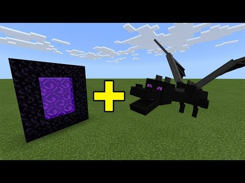 I Sent An Ender Dragon To The Nether Portal In Minecraft - Here's What Happened...