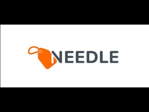 NEEDLE Interview Michael Koch