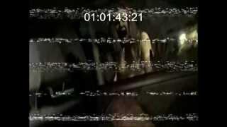 VHS Deutscher Trailer