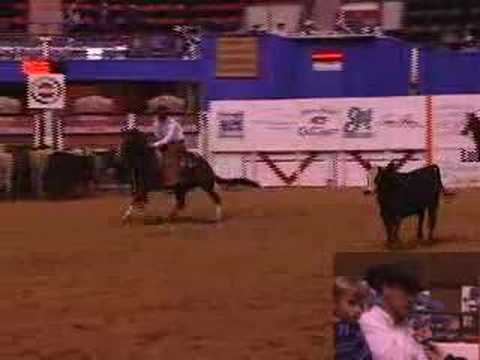 2008 NCHA Super Stakes Classic Open