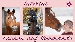 How To: FLEHMEN I dem Pferd LACHEN beibringen I Clicker Training & Zirkuslektionen mit Wölbchen