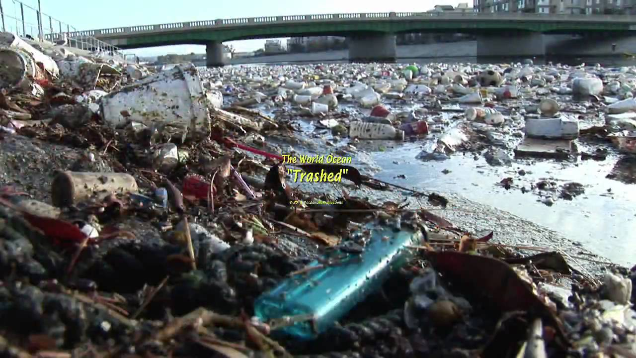 """The World Ocean """"Trashed"""" (short) in HDV - YouTube"""