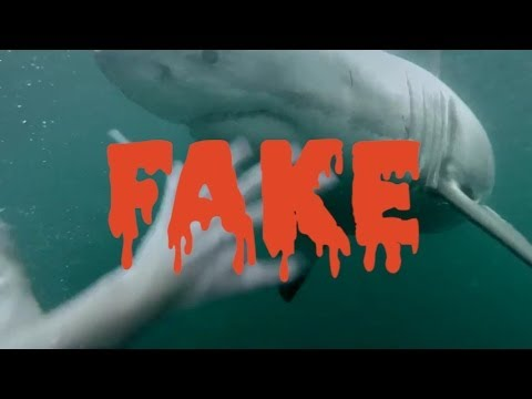 GoPro FAKE Man Fights Off Great White Shark In Sydney Harbour - Man fights great white shark sydney harbour jumping cliff