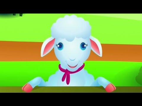 Qengji Vogël | Këngë për fëmijë