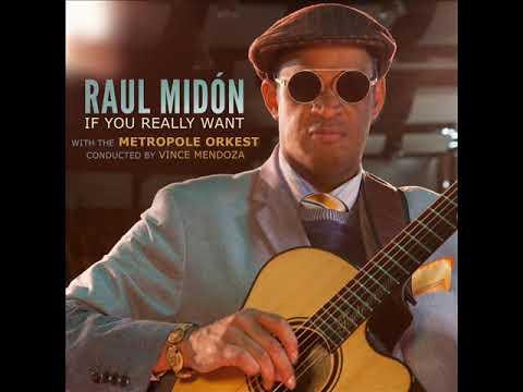 Raul Midón - Sittin' in the Middle