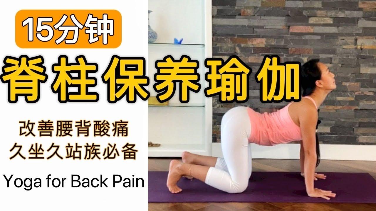 15分钟瑜伽脊柱保养   缓解腰背酸痛   增强脊柱的韧性   15mins Yoga for Back Pain