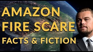 The Great Amazon Fire Scare of 2019