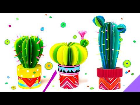 Cactus- secret box