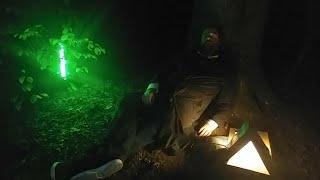 ???? Illuminacja Ator w lesie ???? - Na żywo