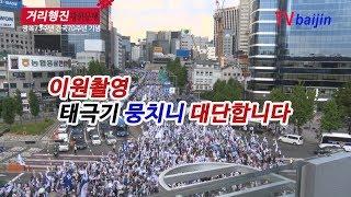광복절_ 거리행진 _ 태산 삼킬 군중규모 일궈냈다