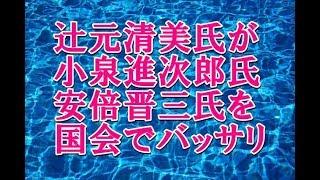 辻元清美氏が小泉進次郎氏と安倍首相を国会でバッサリ