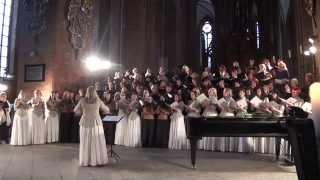 V KONCERTS 06.04.2014 ,Rīgas Sv. Pētera baznīca-00318
