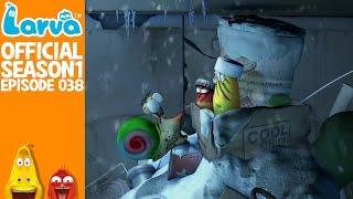 official snowball fight- larva season 1 episode 38