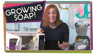Watch Soap Grow!