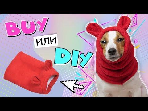 Как сшить собаке шапку своими руками