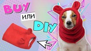 как сделать шапку для собаки своими руками