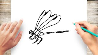 How to Draw Dragonfly Step by Step for Beginners Slow and Easy