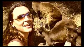 Download Kick The Kangaroo - Australian Tour MP3 song and Music Video