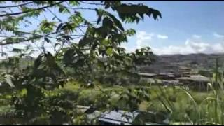 鉻滿翡翠玉石賭石緬甸影片3