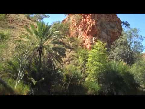 Palm Springs WA Australia