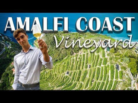 VINEYARD, WINERY FOR SALE IN ITALY, AMALFI COAST| Romolini Christie's