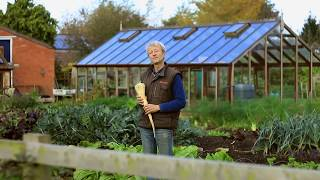 Garden myths that take our time