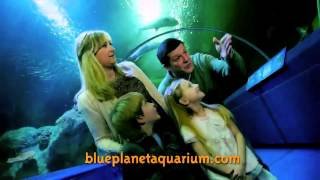 Blue Planet Aquarium Tv Advert 2014