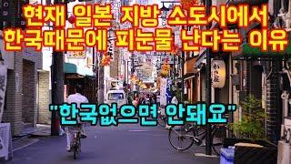 현재 일본 지방 소도시에서 한국때문에 피눈물 난다는 이유