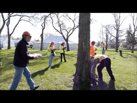 Tree Appraisal Qualification 3 day Training
