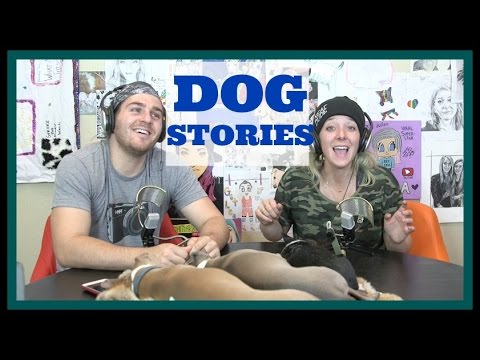 Thumbnail: Podcast #36 - Dog Stories