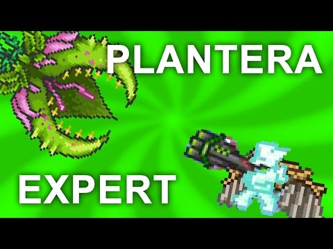 Plantera EXPERT Mode Guide! How to Kill Plantera! [1.3]