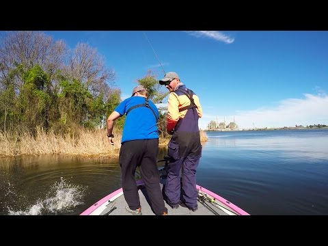 WTF..Crazy Bass Fishing moment..