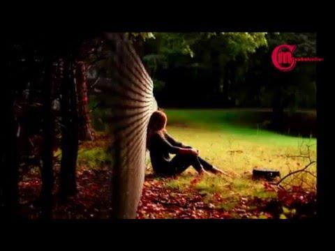 Main Woh Chaand-Full Video Song - Teraa Surroor - Himesh Reshammiya  By MOnash CReaTion