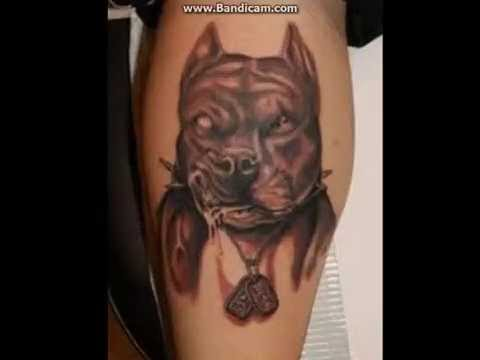 6f1fbe3256bc3 pitbull tattoos - Best tatoo images - YouTube
