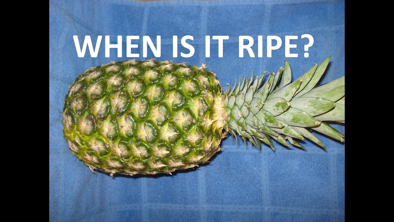 How to Ripen an Unripe Pineapple