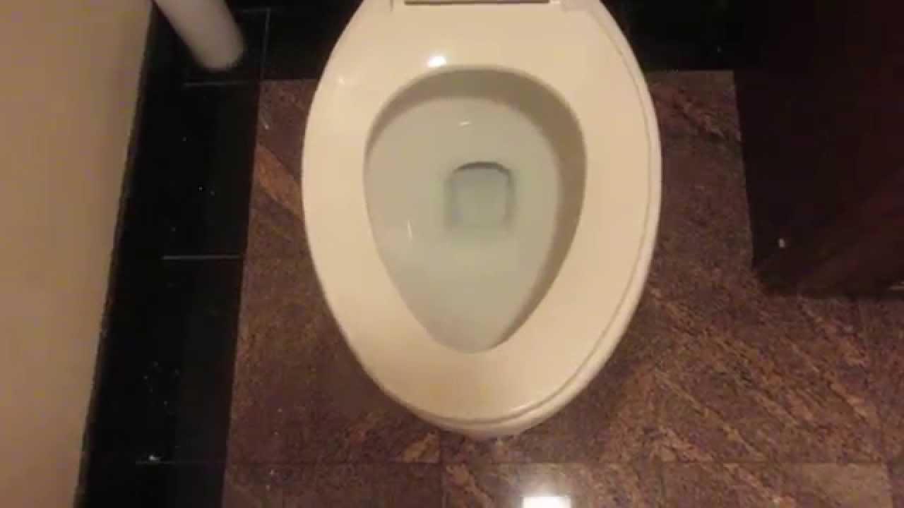 Rare 2007 Glacier Bay Pressure Assist toilet - YouTube