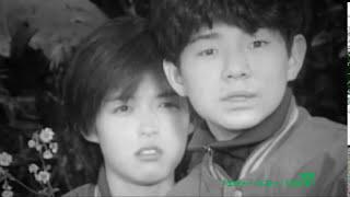 ふきのとう/2.初恋 作詩・作曲:細坪基佳 『ever last』(1992年3月25...