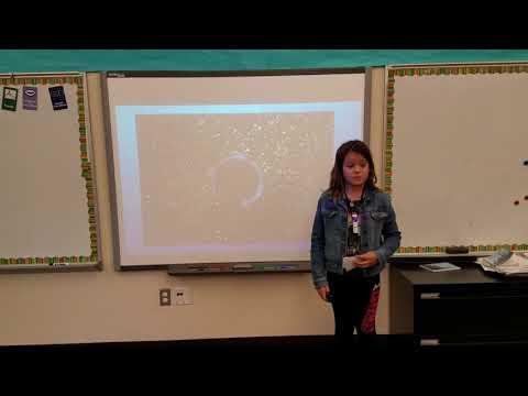 Black holes and spaghetti | Zoe Lowen | Spiritridge Elementary School