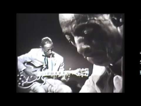 Mississippi Fred McDowell  1904 - 1972