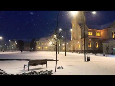Snežni Zrenjanin