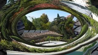 visita al jardin botanico de madrid