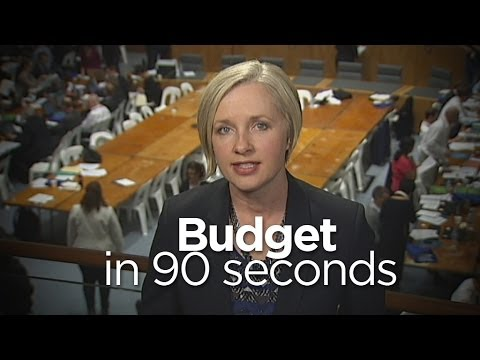 The Budget In Ninety Seconds